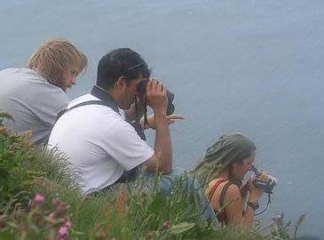 Watching the gannets at Troup Head