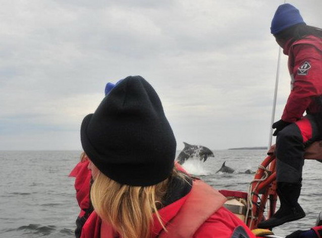 A bottlenose encounter to remember!
