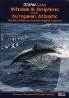 Whales & Dolphins of the European Atlantic